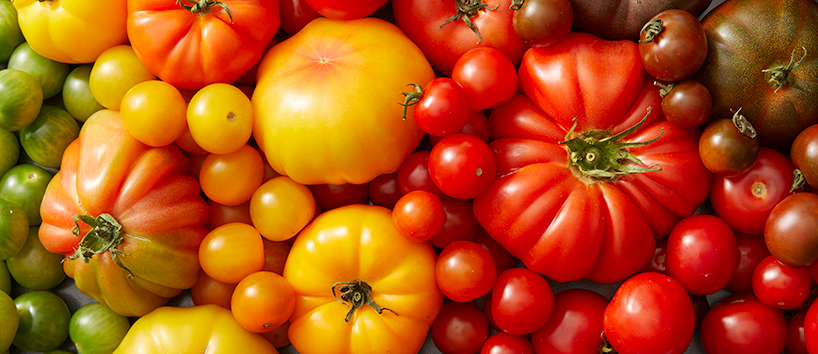0629_Mixed_Tomatoes_2_SP_6_26_17