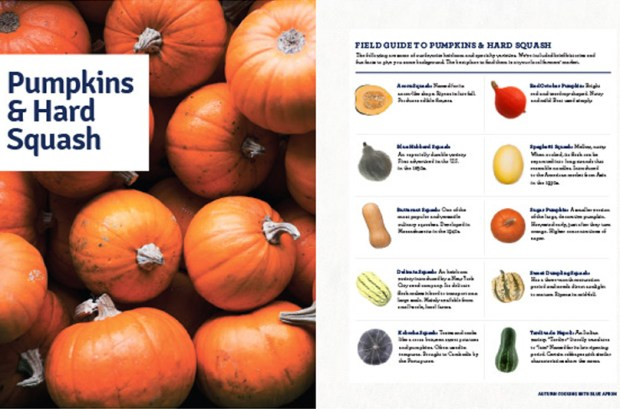 Field Guide to Pumpkins