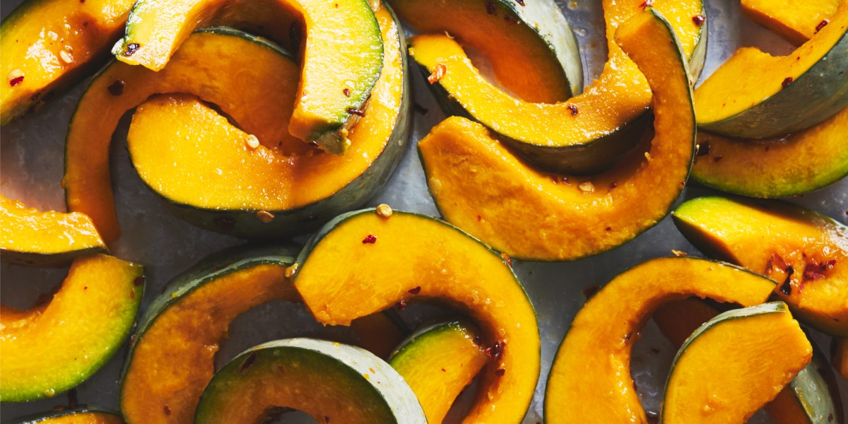squash-recipes-round-up