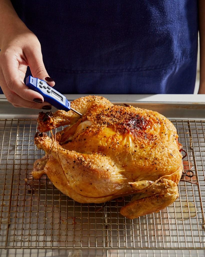 taking chicken temperature