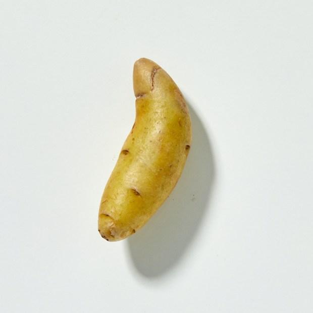 types of fingerling potatoes