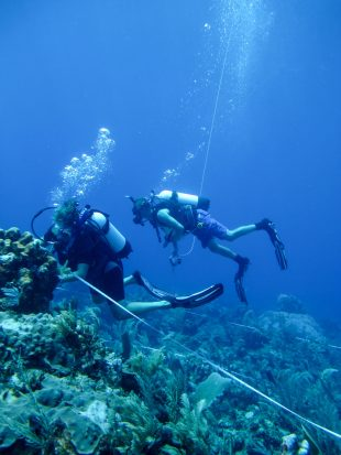 Surveying Madagascar's coral reefs