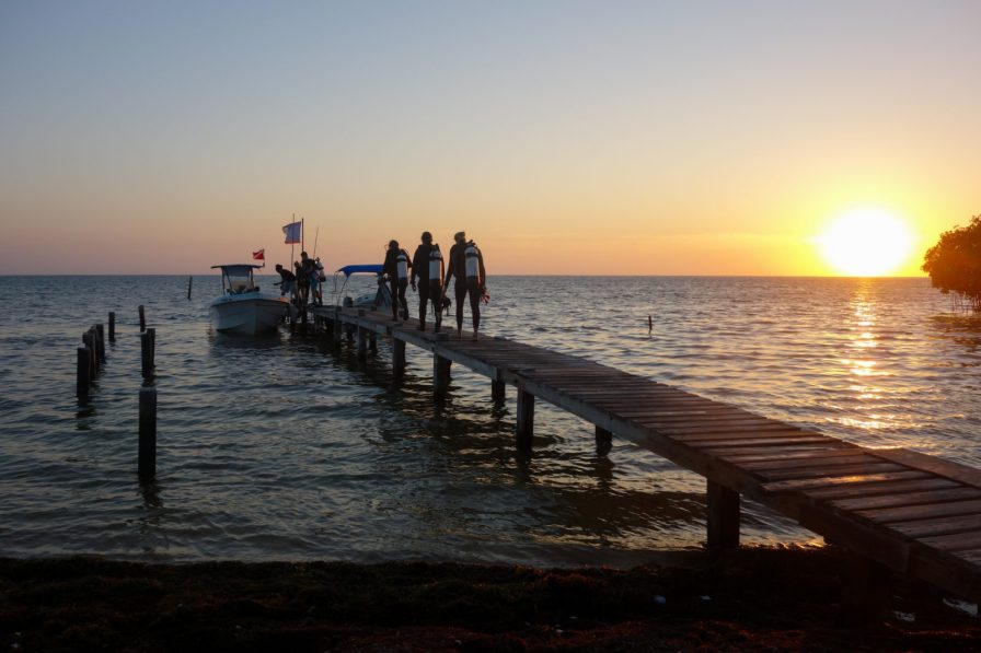 Heading off to dive as the sun rises | Photo: Michelle Smith