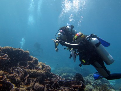 BV volunteers surveying a reef in Timor-Leste   Photo: Jen Craighill