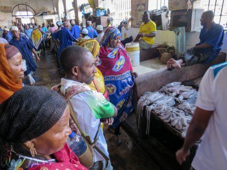 The Comorian fishers visiting a Zanzibari fish market