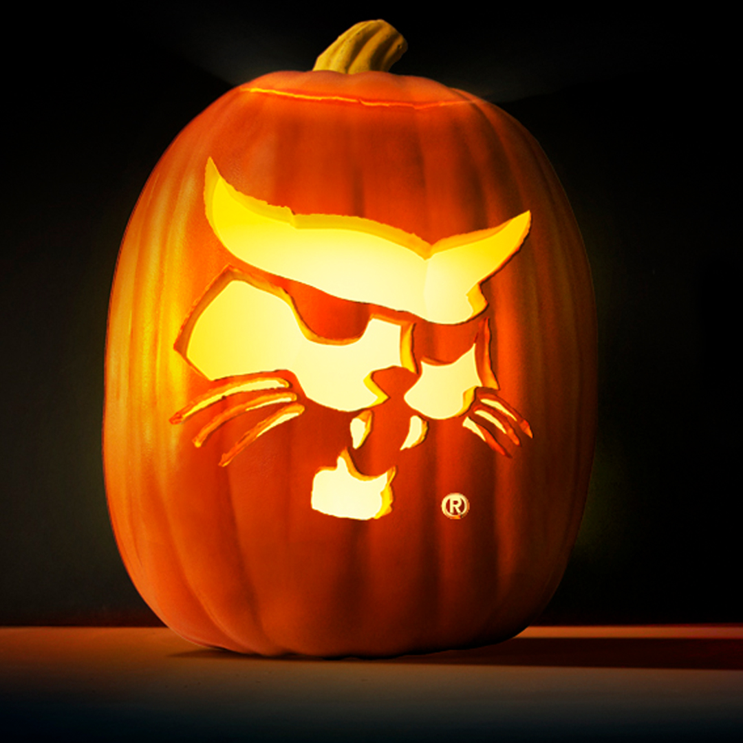 Get Your Tools It S Pumpkin Carving Time