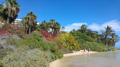 Fuertaventura - Laguna Sotavento 7