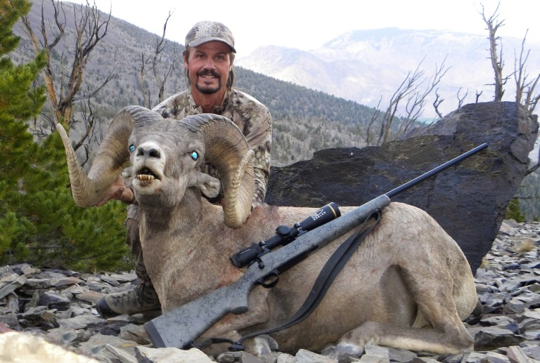 James Reed a wild sheep and a rifle