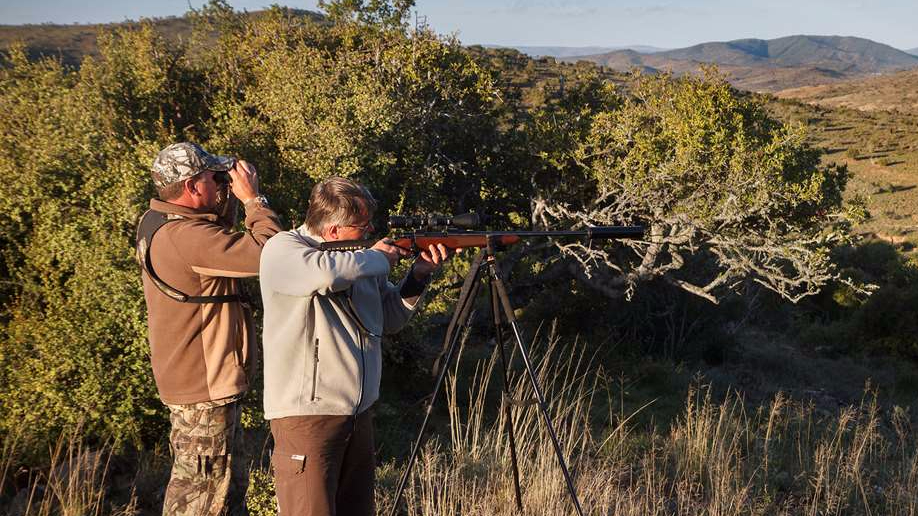 Hunting with a sound moderated rifle