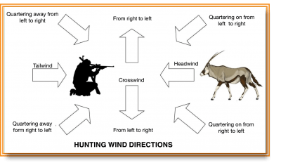 Different wind directions