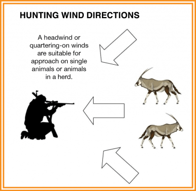 Unfavorable wind directions when wind is from animal to hunter
