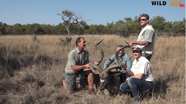 A Kudu with record horns measured