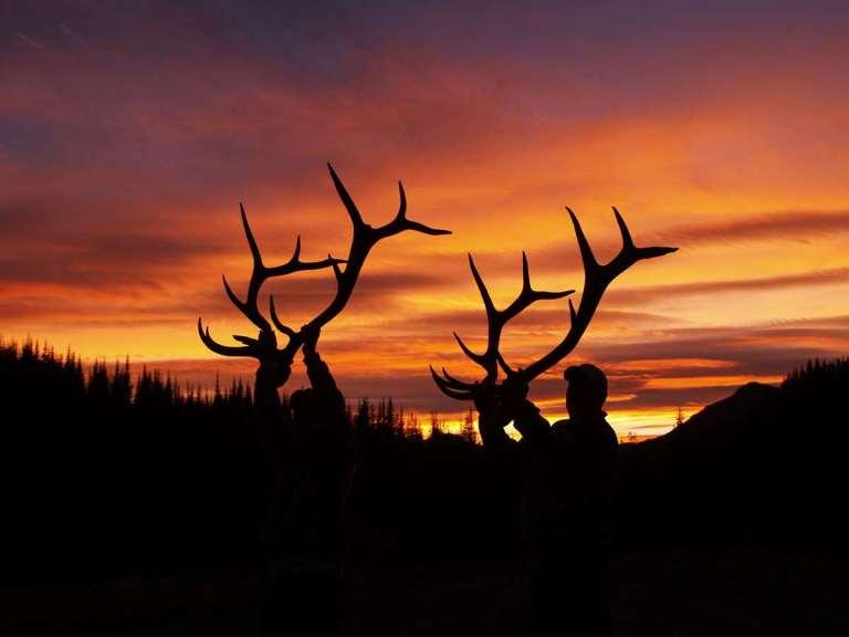 elk bow river.jpg