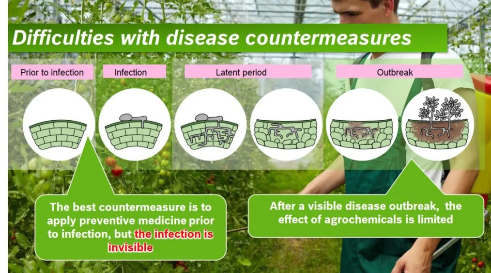 IoT in agriculture: Graphic showing the difficulties in combating plant diseases