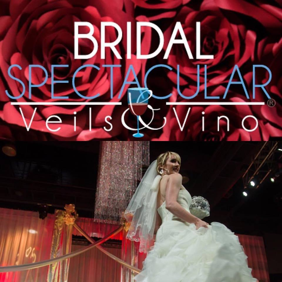 Bridal Spectacular_2017 Veils & Vino Fashion Show_04