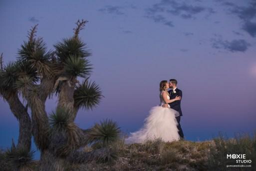 Bridal Spectacular_GregAliciaWed-1214-blog
