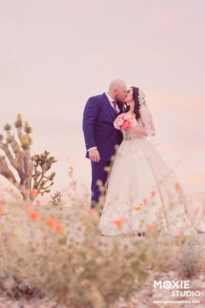 Bridal Spectacular_JasmineMicahWedding-MoxieStudio-Paiute-1132web