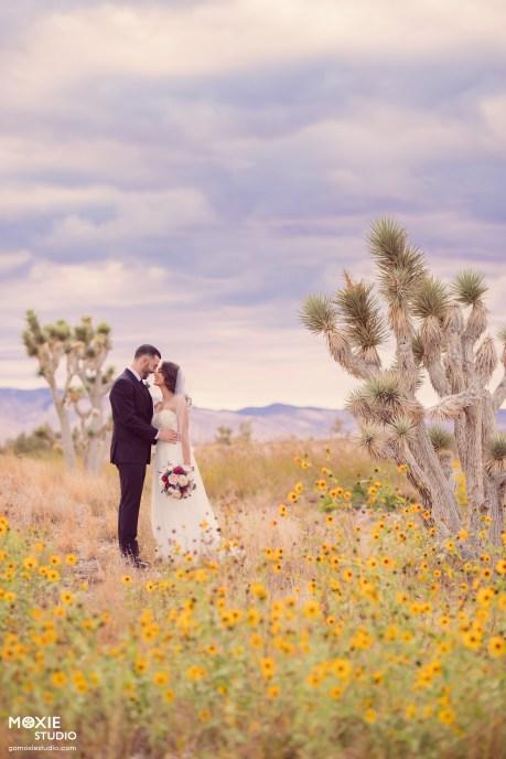 Bridal Spectacular_MOX48695