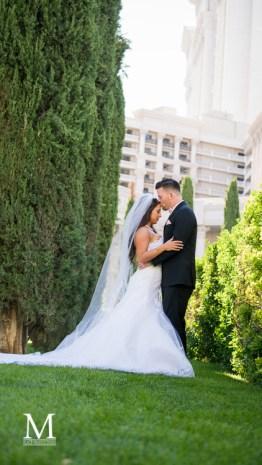 Bridal Spectacular_MPLACE2016-04-230727Trent&Jennifer-ReflectionBay-Caesars-SamsTownLive