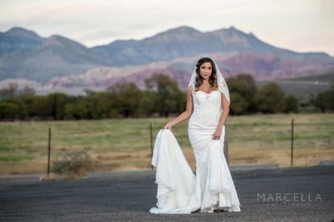 Bridal Spectacular_MarcellaP_SpringMTR_36
