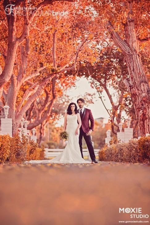 Bridal Spectacular_Moxie Studio-Casa-Zelda Nathan-35-2-mb-blog0107
