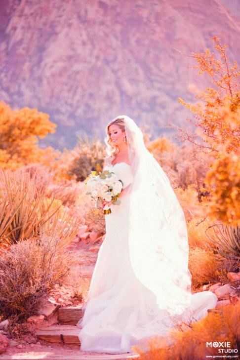 Bridal Spectacular_MoxieStudio- Schrock Wedding- Red Rock Resort-12-tu-mb
