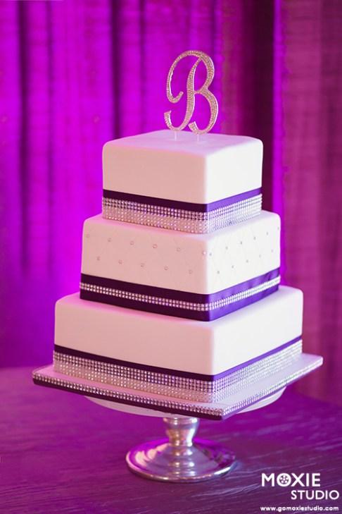 Bridal Spectacular_SandraNickWedding-MoxieStudio-Dragonridge-955-web