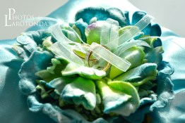 Bridal Spectacular_Syedweb01