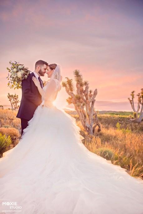 Bridal Spectacular__ENT8089-Edit-mb-blog