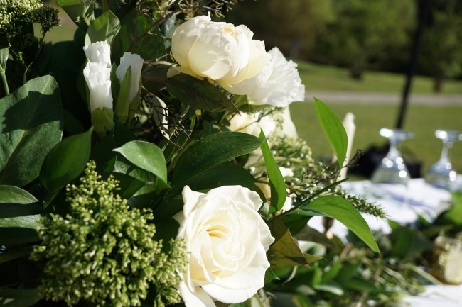 Cabbage Roses and Greenery