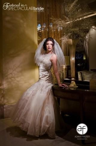 Spectacular-Bride_Las-Vegas-Wedding-Photography_Hilton-Lake-Las-Vegas-Wedding_5