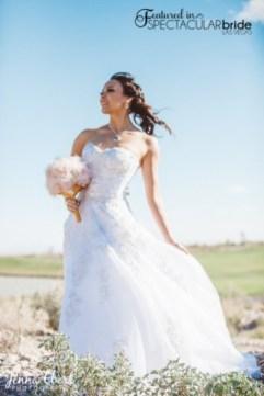 Spectacular-Bride_Las-Vegas-Wedding-Venues-Photography_Jenna-Ebert_1-1