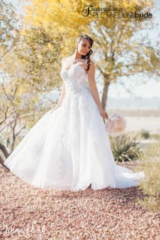 Spectacular-Bride_Las-Vegas-Wedding-Venues-Photography_Jenna-Ebert_2-1