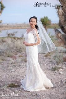 Spectacular-Bride_Las-Vegas-Wedding-Venues-Photography_Jenna-Ebert_6