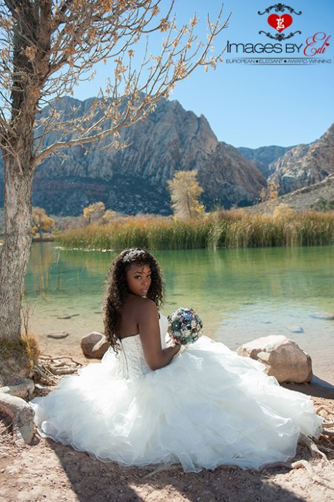 Images by EDI Spectacular Bride