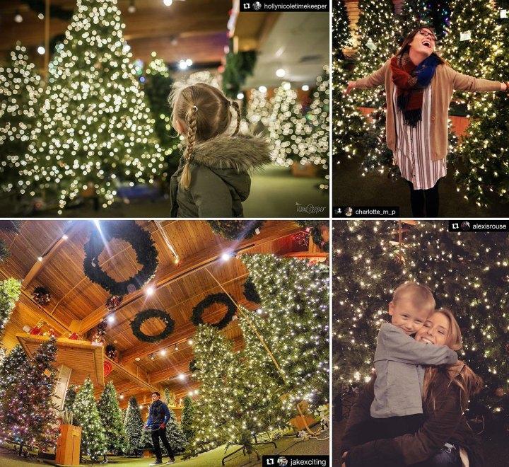 Bronner's Christmas Wonderland, (Artificial) Christmas Tree Room