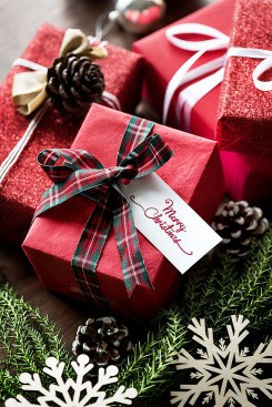 Merry Christmas, Red Wrapped Present With Plaid Ribbon.