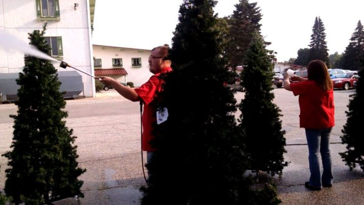 Bronner's Christmas Wonderland's decorating team spring cleaning artificial Christmas Trees.