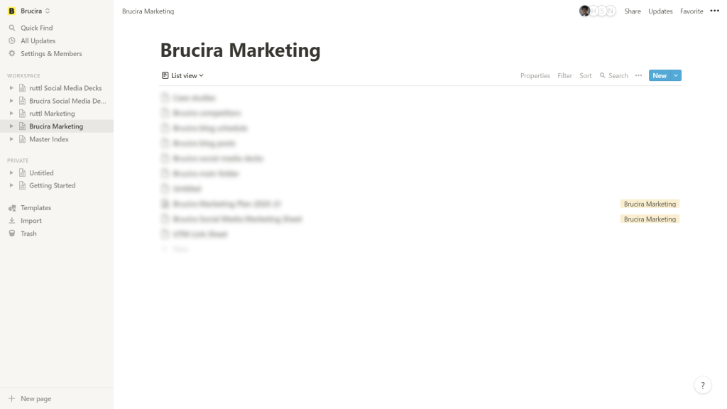 Notion interface used by Brucira