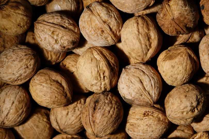 brown walnuts