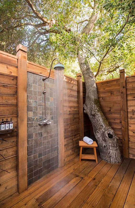 Living Tree Patio Bath