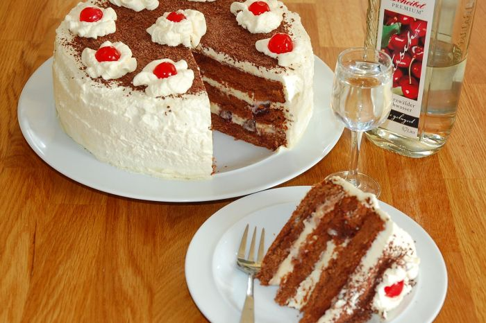 Today is National Black Forest Cake Day