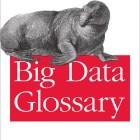 Glossaire Big Data (ed. O'Reilly)