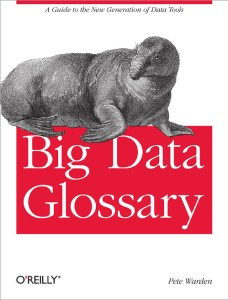 Glossaire Big Data (ed. O'Reilly)