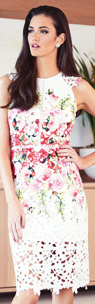 Antonio Melani Jolene Printed Chemical Lace Dress