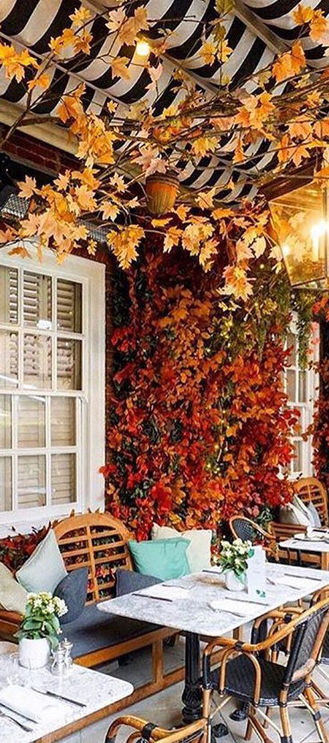 Restaurant in the Fall | Veranda Magazine