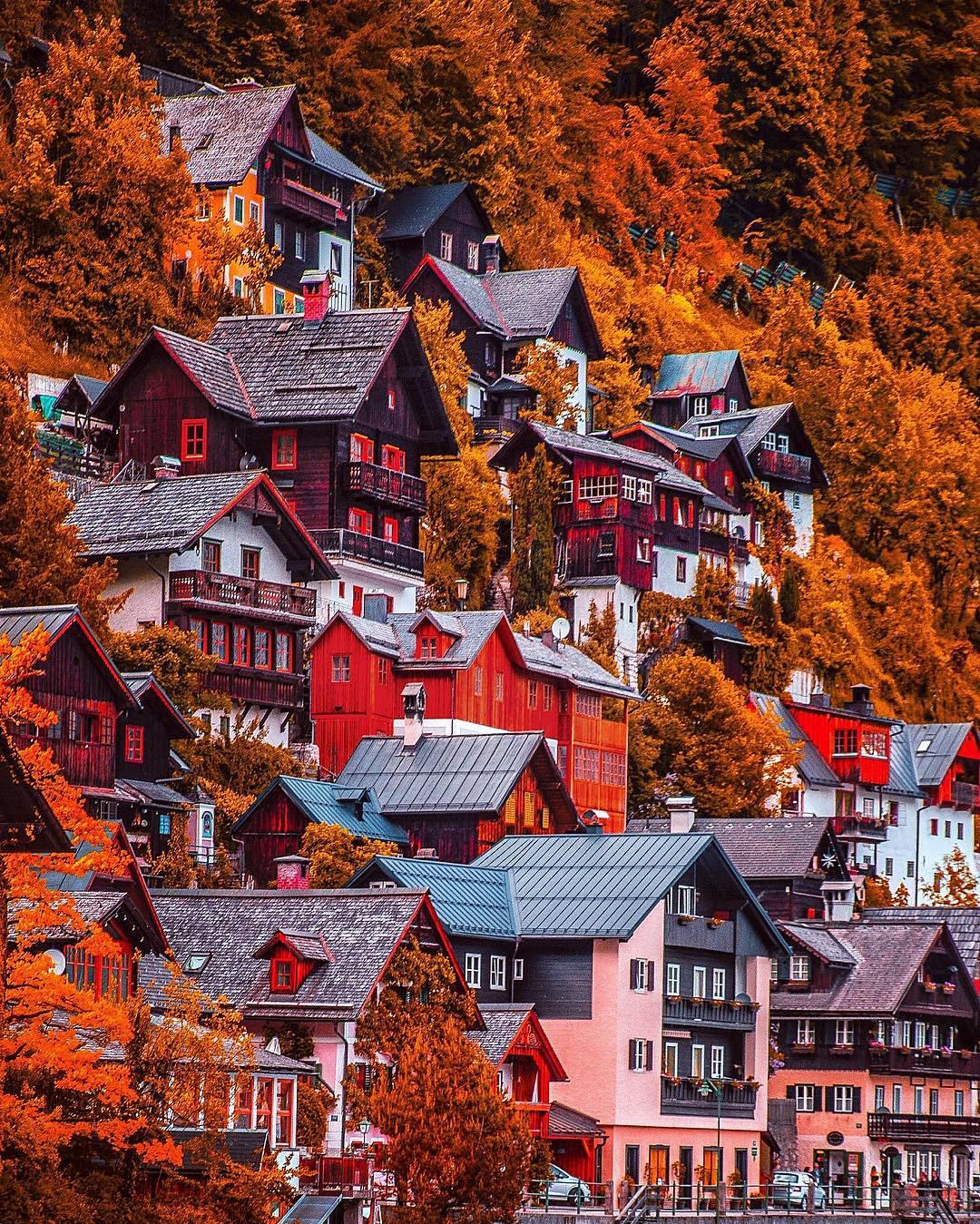Fall in Austria | Kardinal Melon Instagram