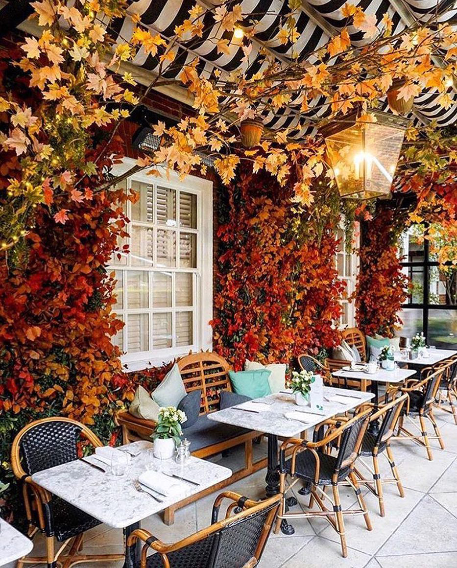 Restaurant in the Fall | Veranda Mag