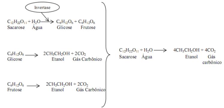Fermentação via simplificada EMBDEN-MEYERHOFF-PARNAS