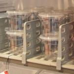 Cambro NRA booth Shelf Divider